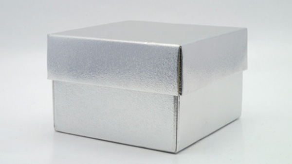 Life In a Silver Box